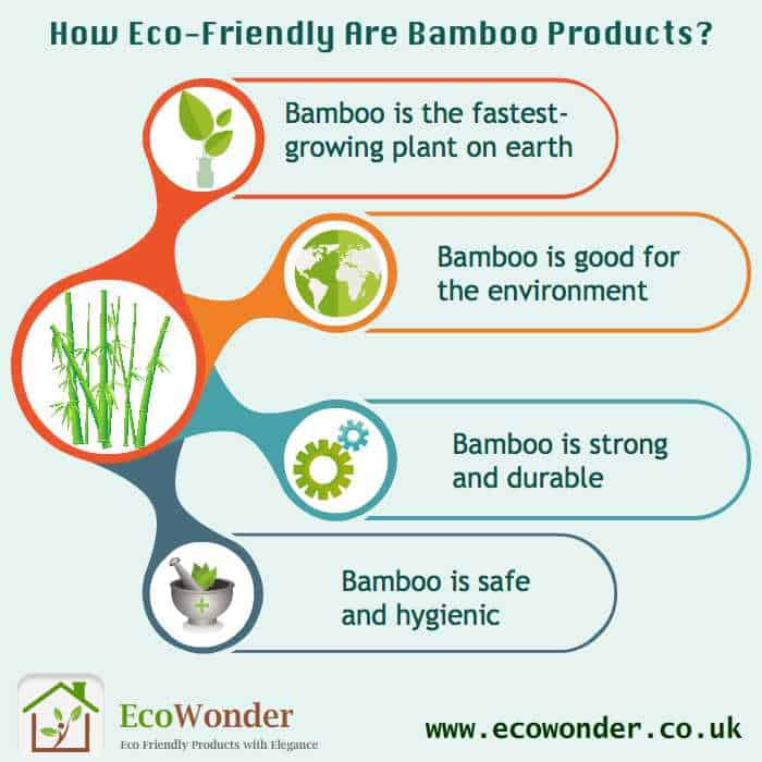 How Eco Friendly Are Bamboo Products?