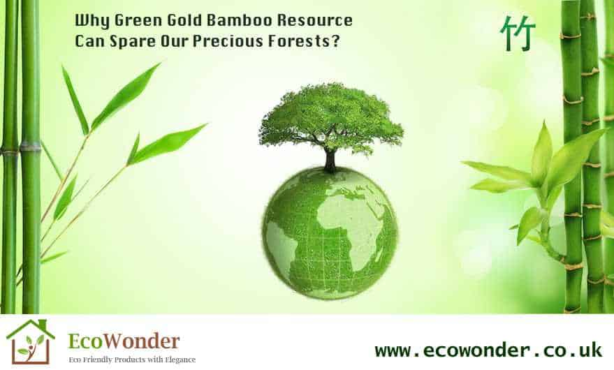 Why Green Gold Bamboo Resource Can Spare Our Precious Forests?